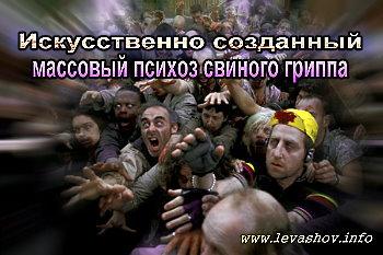 http://jizn.my1.ru/levashov/psihoz.jpg