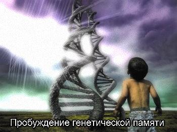 http://jizn.my1.ru/sbornik/genpamyat.jpg